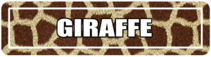 Giraffe print street signs for college events