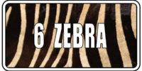 6 - Zebra