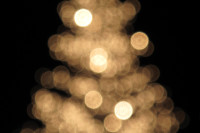 Tree Lights Blur
